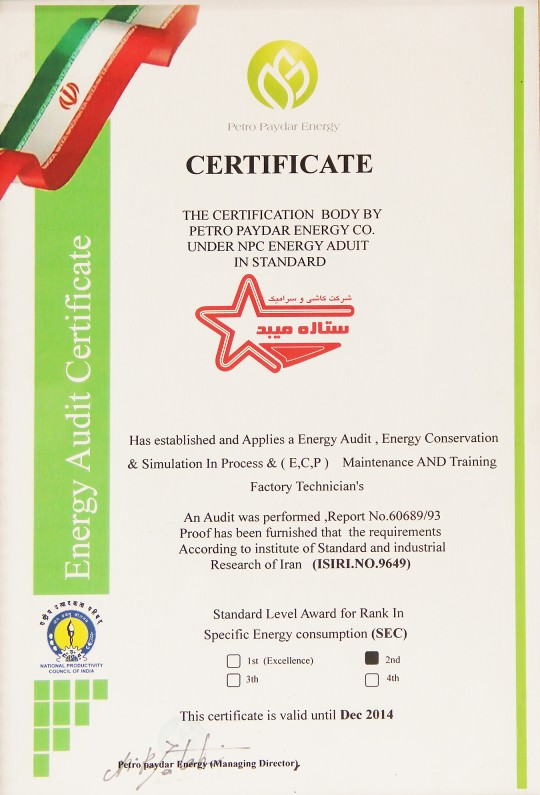 Energy Audit Certificate